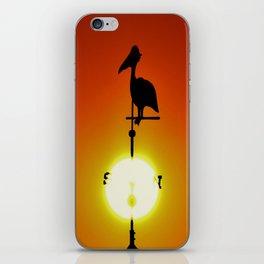 Pelican Weathervane iPhone Skin