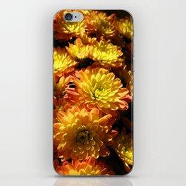 Fall Chrysanthemums iPhone Skin