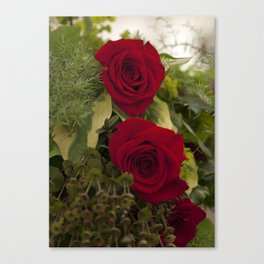 Red red roses Canvas Print