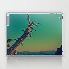 masonry  Laptop & iPad Skin