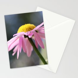 Pink daisy Stationery Cards