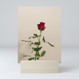 Single red rose Mini Art Print