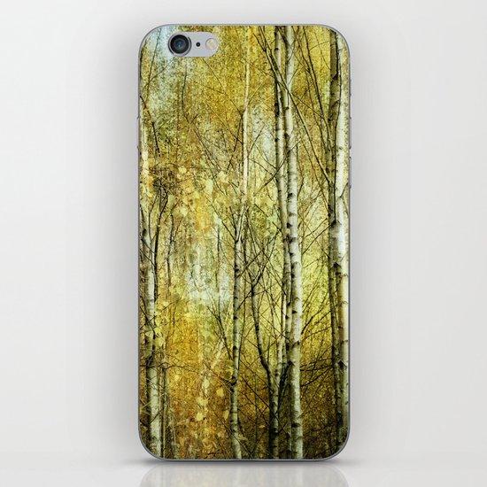birches  iPhone & iPod Skin