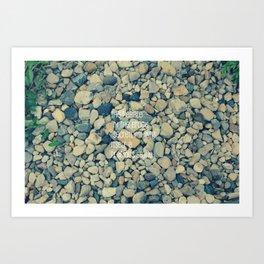 Pebble in the brook Art Print