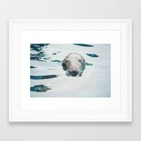 seal Framed Art Prints featuring Seal by betweenthebookpages