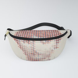 Pattern Recognition Fanny Pack