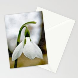 Moody Snowdrop Stationery Cards