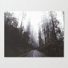 Mystic Highway Canvas Print