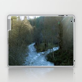 Rushing waters at Salt creek.... Laptop & iPad Skin