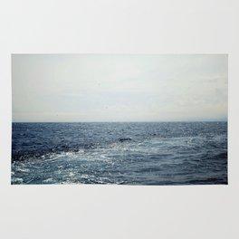 buoyancy Rug