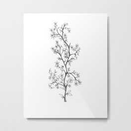 Delicate Fruit of Nature Metal Print