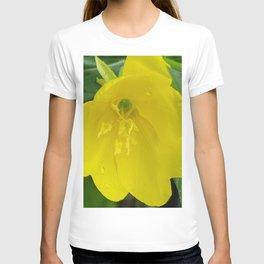 Wildflowers with rainwater at Citrus Farm, Jeju Island, Korea. T-shirt