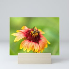 Little bee on a big flower Mini Art Print