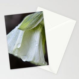 Still and Quiet Things Stationery Cards