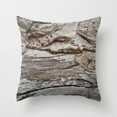 029 Throw Pillow