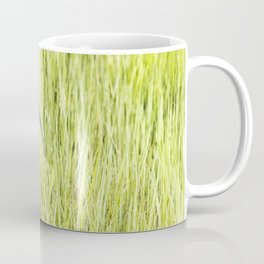 Strutting White-faced Ibis in Breeding Plumage Coffee Mug