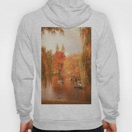Central Park New York City Autumn Hoody