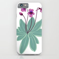 Butterwort Slim Case iPhone 6s