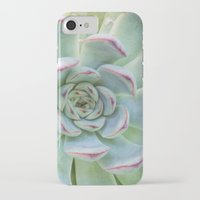 succulent iPhone & iPod Cases featuring Succulent by Tammy Franck
