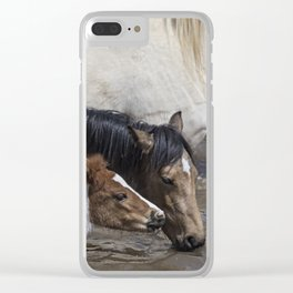 Pinto Foal Enjoying a Dip - South Steens Mustangs Clear iPhone Case