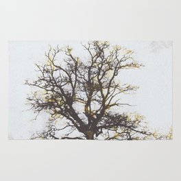 The alchemy of the tree Rug