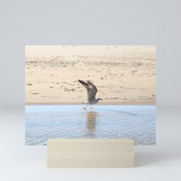 Seagull bird taking off Mini Art Print