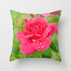 Rose after rain Throw Pillow