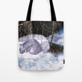 Lovely Squirrel in Montreal Tote Bag