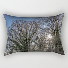 Beautiful day in a winter forest Rectangular Pillow