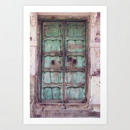 Doors Of India 3 Art Print