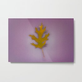 Autumn musings I Metal Print
