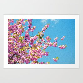 INTO THE PINK Art Print