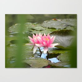 Monet's Water Lillies Canvas Print