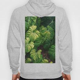 Australia tropical plants Hoody
