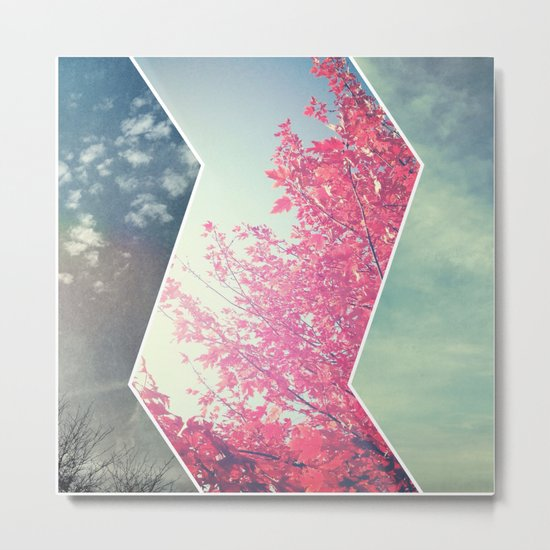 Sky and Leaves Metal Print