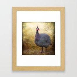 I love Guinea Fowl! Framed Art Print