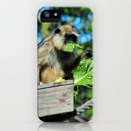 Mysterious Lady II iPhone Case