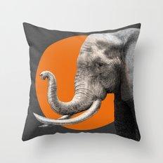 Wild 6 - by Eric Fan and Garima Dhawan Throw Pillow