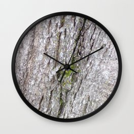 Mossy Bark, Bark of Tree, Moss onTree, Background Texture Wall Clock