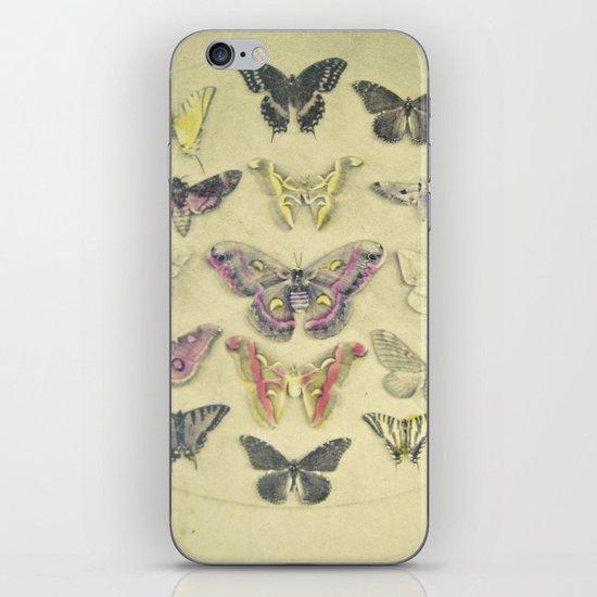 Butterflies and Moths iPhone & iPod Skin