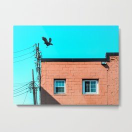View from the alley - as the crow flies Metal Print