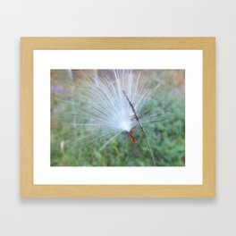 Wish Catcher Framed Art Print