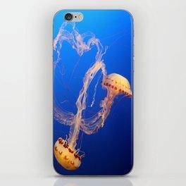 Medusa's Roundel iPhone Skin