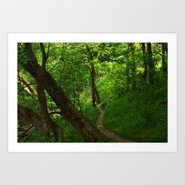 Woods II Art Print