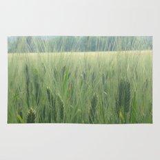 Spring wheat Rug