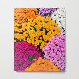Joy And Beauty Metal Print