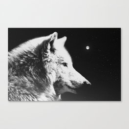 Wolf night | Wolves | Wolf pillow | Starry night | White wolf Canvas Print