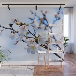 White Japanese Apricot Flowers, Blue Sky Wall Mural