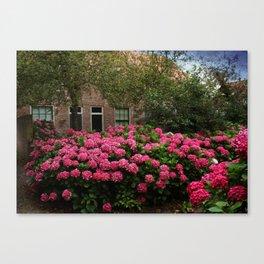 Hydrangea Garden In Woudrichem The Netherlands Canvas Print