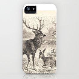 Antique Deer Scene in Nature iPhone Case